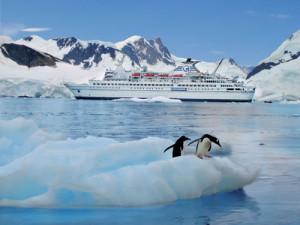 expeditie antarctica 4