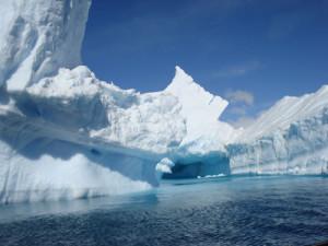 expeditie antarctica 5