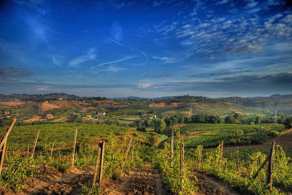 Goedkope wijnreizen in Europa5