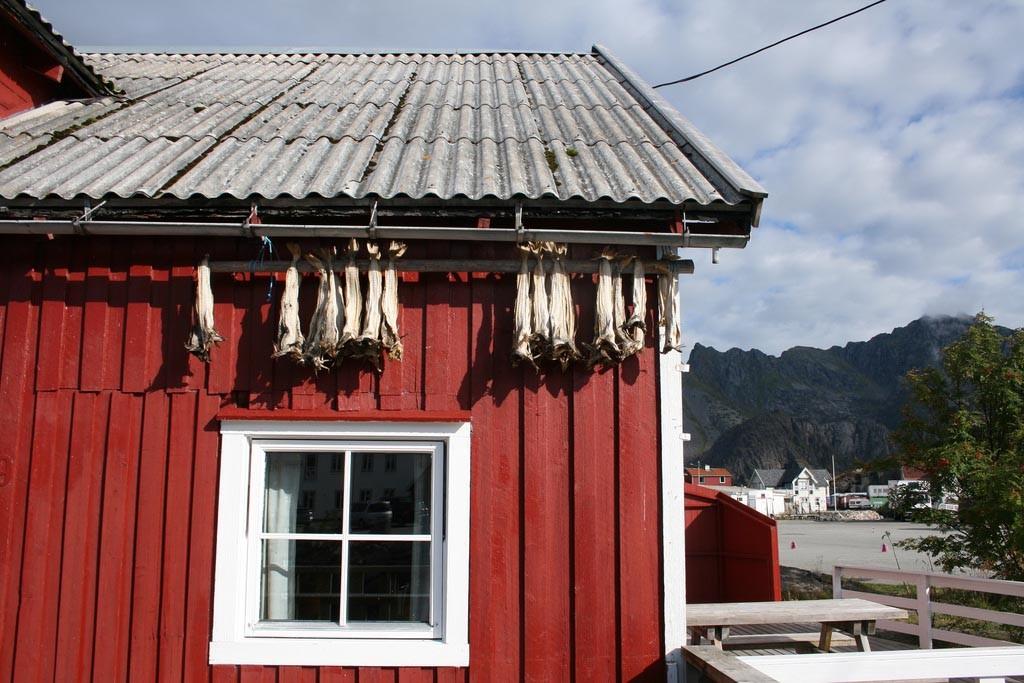 Auto of Camperrondreis door Noorwegen7