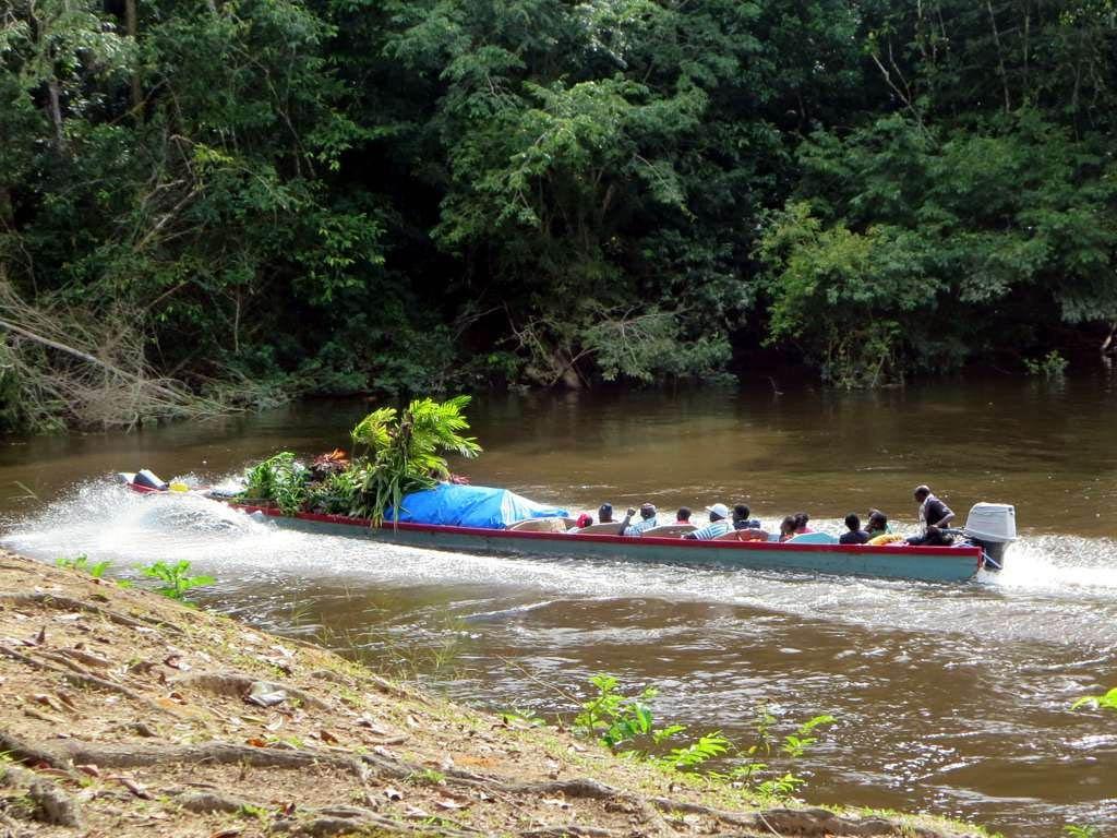 Goedkope rondreis Suriname5