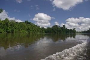 Goedkope rondreis Suriname6