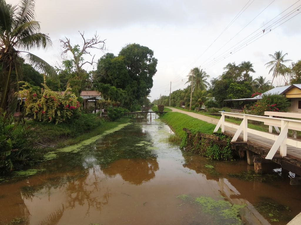 Goedkope TuiFly tickets naar Paramaribo Suriname5
