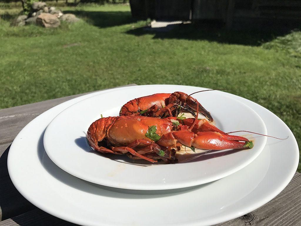 Culinair genieten in Zuid-Zweden27