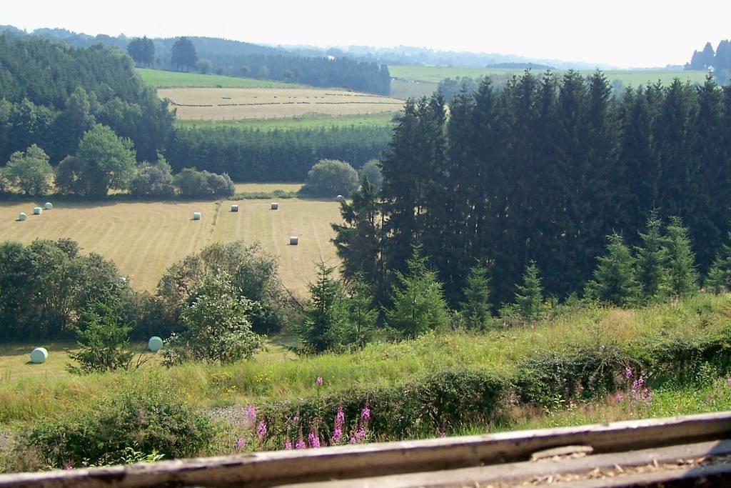 Overnachten huisje met houtkachel en uitzicht Ardennen23