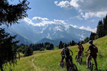 Zomervakantie in de Franse Alpen 7