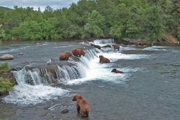 Rondreis naar de natuur van alaska 7